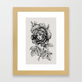 Sad Rose Framed Art Print