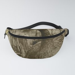 Black Swan 46 Tint Donegal Ireland Fanny Pack