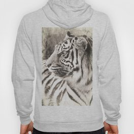 A Tigers Sketch 2 Hoody