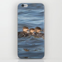 Momma and ducklings iPhone Skin