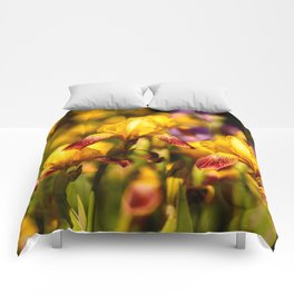 Bearded irises Comforters