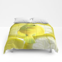 Lemon Fish Comforters