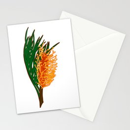 Australian Native Floral Illustration - Beautiful Banksia Flower Stationery Cards