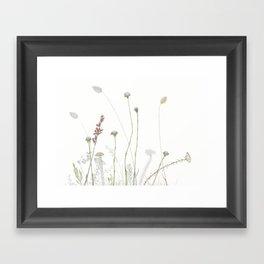 Liebetland Flowers Amongst The Fynbos, 2018 Framed Art Print