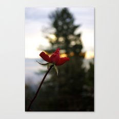 Rose City Canvas Print