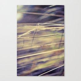 Comfort In Simplicity  Canvas Print