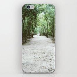 Pathway iPhone Skin