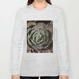 Succulent green pink rosettes Long Sleeve T-shirt