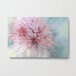 Sorbet ~ floral macro Metal Print