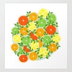 A Slice of Citrus Art Print