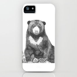 Malayan Sun Bear (Beruang Madu) iPhone Case