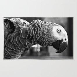 Pretty Bird Rug