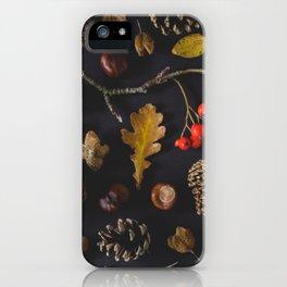Seasonal Shiz iPhone Case