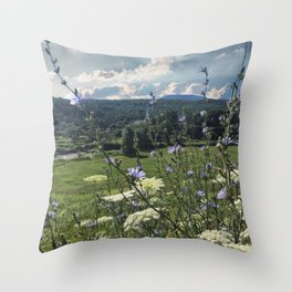 Wildflower Landscapes Throw Pillow