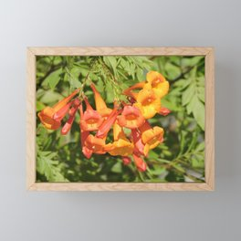 Natural Brass Blowing in the Breeze Framed Mini Art Print