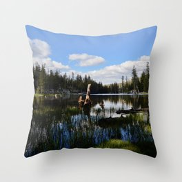 mosquito lake in vertical stripes Throw Pillow