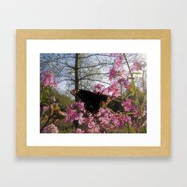 Take Flight pt. 2 Framed Art Print