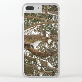 A dead pine Clear iPhone Case