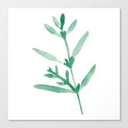 Leaf Series Canvas Print
