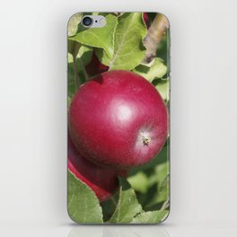 Apple Almost Ready iPhone Skin