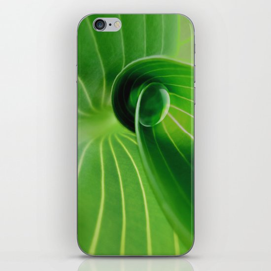Leaf / Hosta with Drop (2) iPhone & iPod Skin