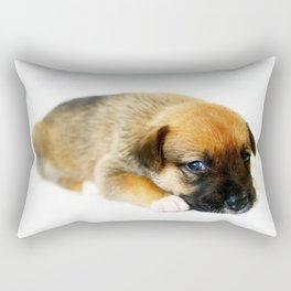 Bailey 2 Rectangular Pillow
