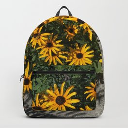 Susans and Cement Backpack