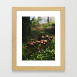Moss Village Framed Art Print