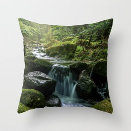 Flowing Creek, Green Mossy Rocks, Forest Nature Photography Throw Pillow