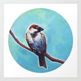 House Sparrow Art Print