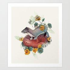 Stoat & Fox Art Print