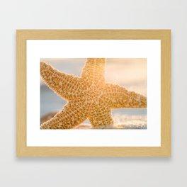 Sugar Starfish Sunset Framed Art Print