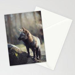 Vincent Afternoon Portrait Stationery Cards