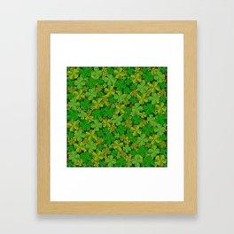 Lucky Clovers Framed Art Print