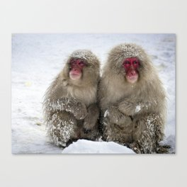 two snow monkeys Canvas Print