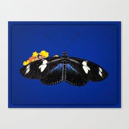 Wild Blue Canvas Print