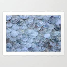 Elegant Seashells Art Print