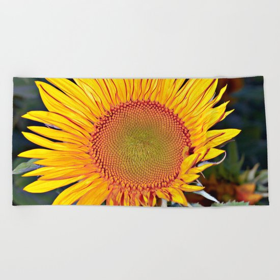 Floating SUN Beach Towel
