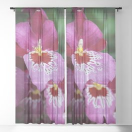 Tropical Flowers Orchids Sheer Curtain