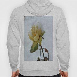 Rose in the Snow Hoody
