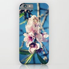 Nectarine Blossoms iPhone 6s Slim Case