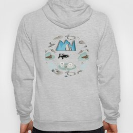 Arctic animals grey Hoody