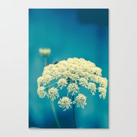 lace Canvas Prints featuring Lace by Olivia Joy StClaire
