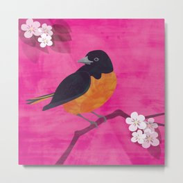 Oriole Bird on Pink Metal Print