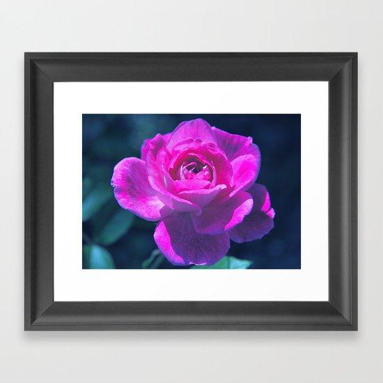 Heart of Rose Framed Art Print