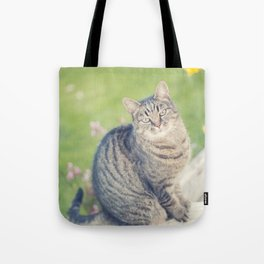 In a past life... Tote Bag