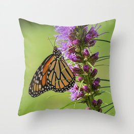 Summer Monarch Butterfly Throw Pillow