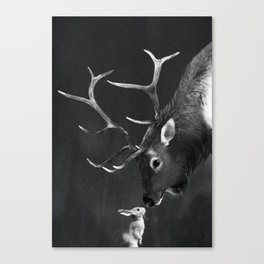 Elk and Rabbit Canvas Print