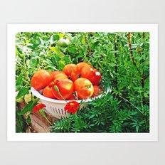 Garden Goodies Art Print