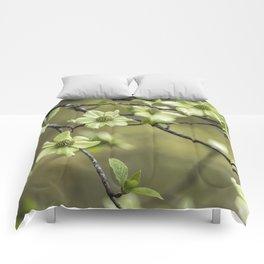 Green Kousa Dogwood Comforters